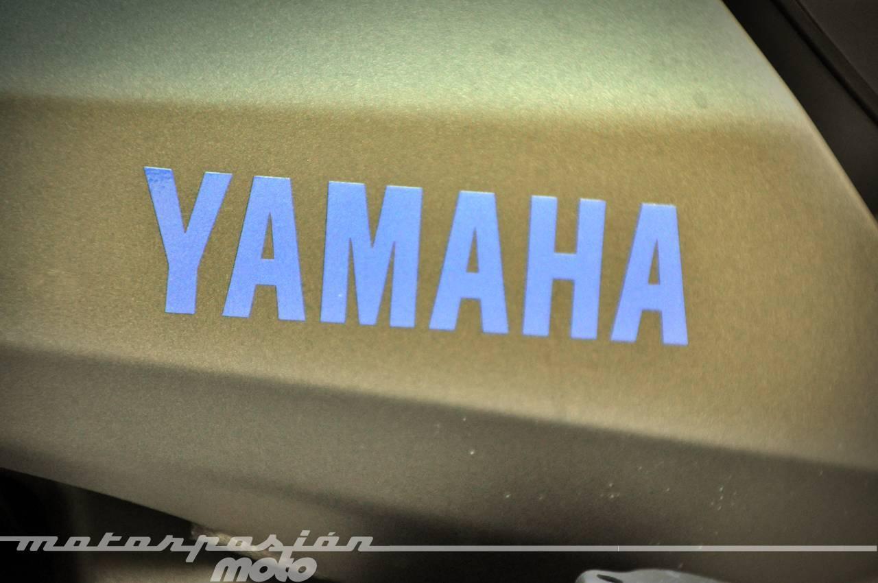 Foto de Yamaha MT-09, (valoración, galería y ficha técnica) (27/38)