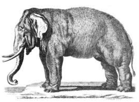 'El viaje del elefante' + 'El hombre duplicado'