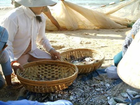 Elaboracion de la salsa de pescado (la pesca)