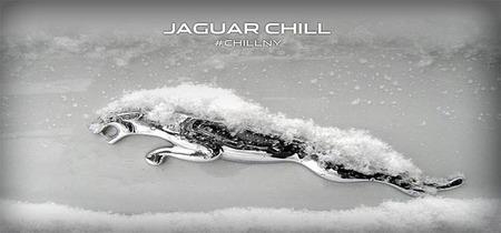Jaguar lleva el invierno al agosto de Nueva York