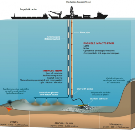Potential Impacts From Deep Sea Mining