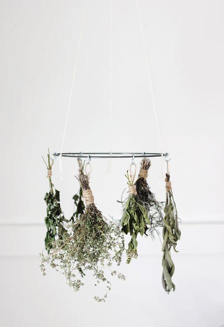 diy-hierbas-aromaticas-5.jpg