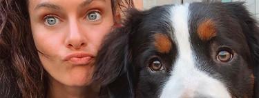 Tu mascota podrá salir aún más adorable en las fotos con la nueva funcionalidad del iPhone 11: el modo retrato de animales