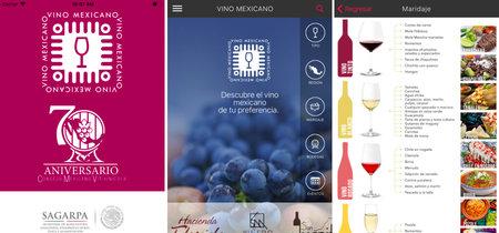 Vino MX, la aplicación que nos acerca más a los vinos mexicanos