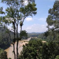 visitando-malasia-5o-y-6o-dias