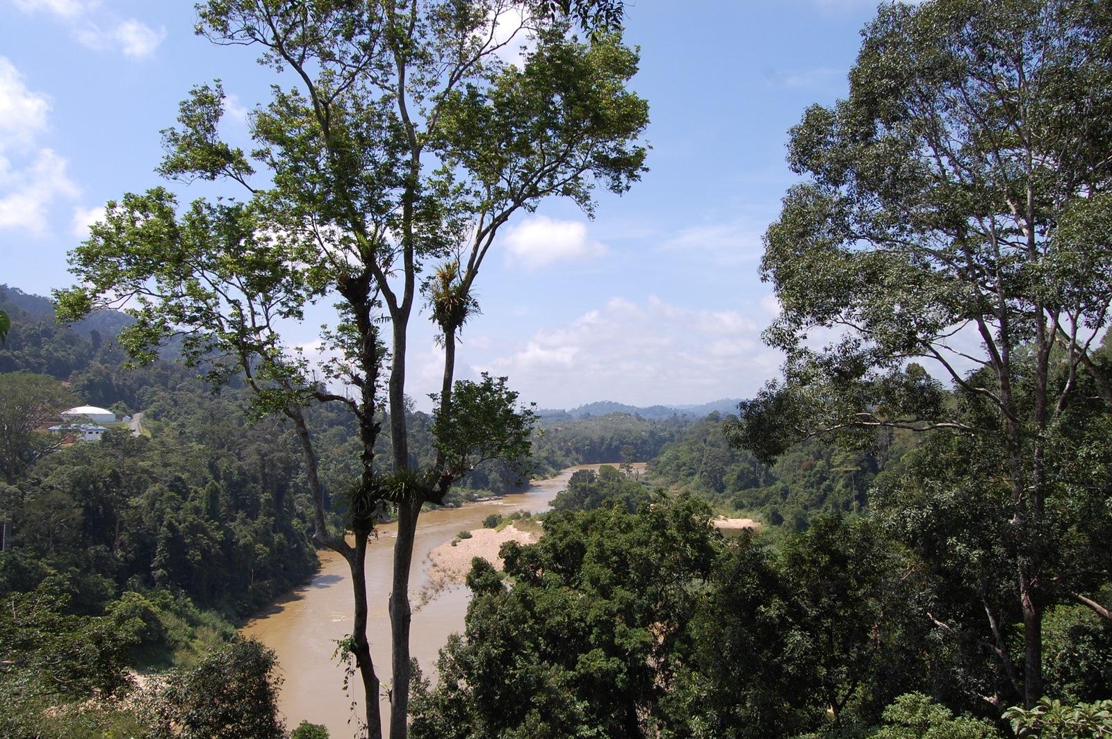 Foto de Visitando Malasia 5º y 6º días (1/77)