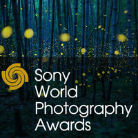 La mejor foto de naturaleza de los Sony World Photography Awards