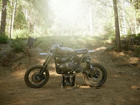 Triumph Scrambler Desert Sled 9