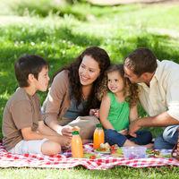 Cinco consejos para evitar intoxicaciones alimentarias en verano y disfrutar de un picnic seguro