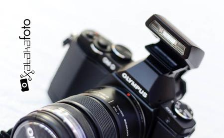 Detalle de Olympus OM-D E-M5