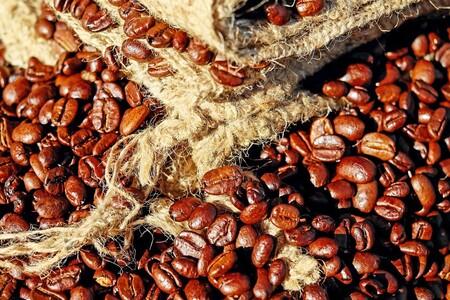 Qué tipos de café se cultivan en México