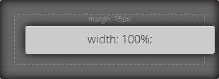 width:100%