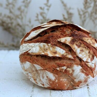 Elaborar en casa cualquier tipo de pan o bizcocho es más fácil con esta panificadora rebajadísima hoy en Amazon