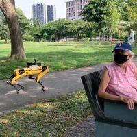 Spot, el perro robot de Boston Dynamics, ahora es el encargado de que los humanos respeten las reglas de 'Susana Distancia'