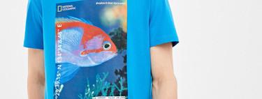 Springfield nos invita a cuidar los océanos con una nueva línea de camisetas