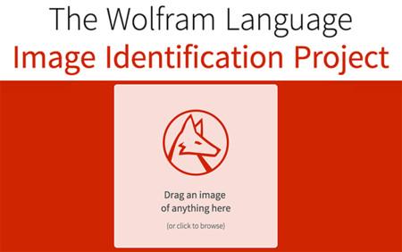 Wolfram Research crea una web para que puedas probar su tecnología de identificación de imágenes