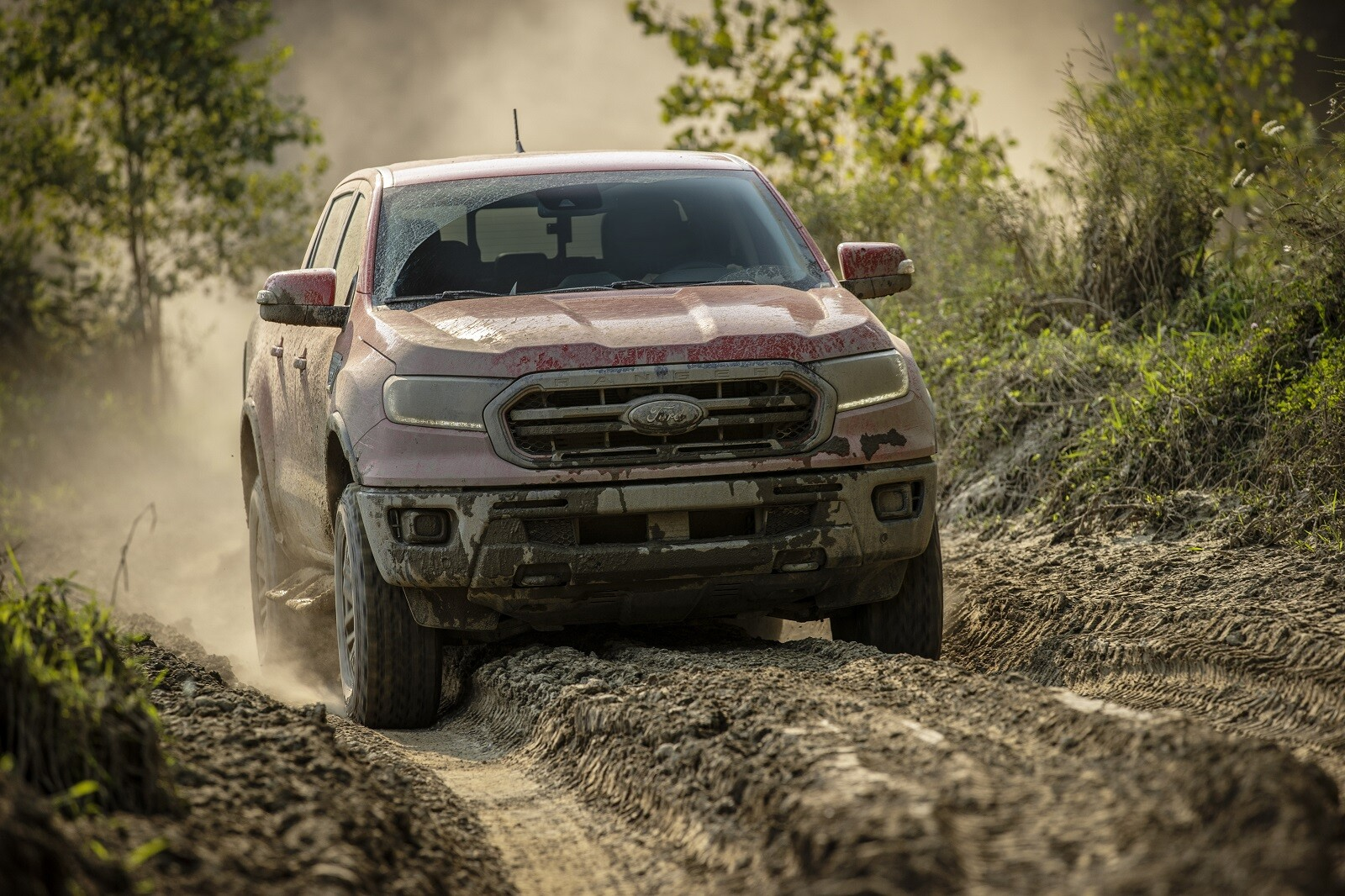 Foto de Ford Ranger Tremor Off-Road (20/28)