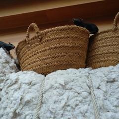 Foto 15 de 32 de la galería xiaomi-mi-6-muestras-de-fotografias-tomadas-con-su-camara en Xataka