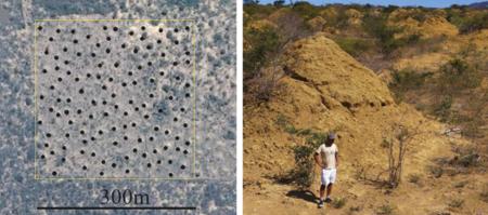 Descubren Gigantesca Termiteros Visible Satelite 1192390822 12894074 1020x452