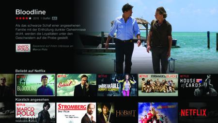 Netflix Pr Ui Print Regdarwin Outofdevice De At