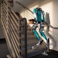 Digit, el robot que facilitará las entregas de paquetes y que ya está a la venta