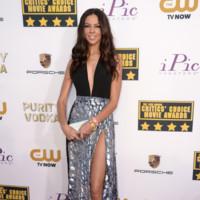 Terri Seymour Critics Choice Awards 2014