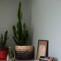 Cuatro ideas para organizar y decorar con una simple cesta