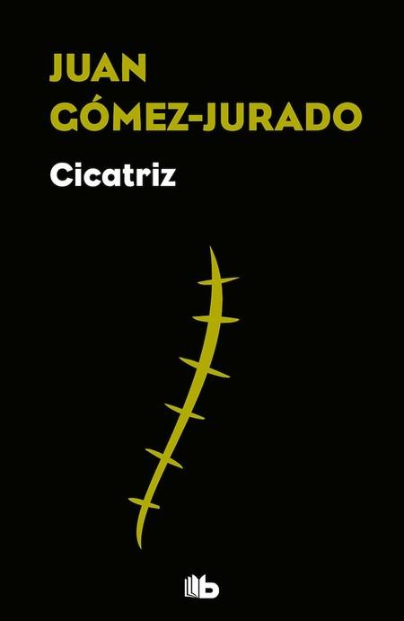 Cicatriz, Juan Gómez-Jurado