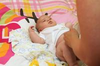 Embutidos probióticos elaborados con bacterias obtenidas de la caca de bebé