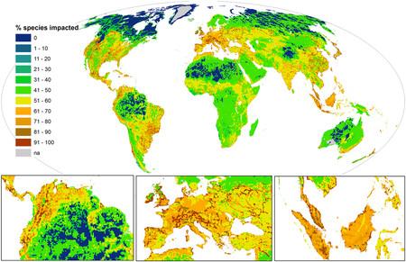 Especies Porcentaje