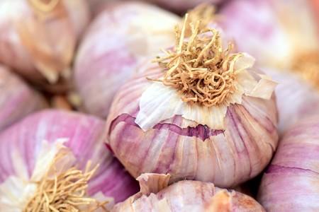 Garlic 2390990 1920