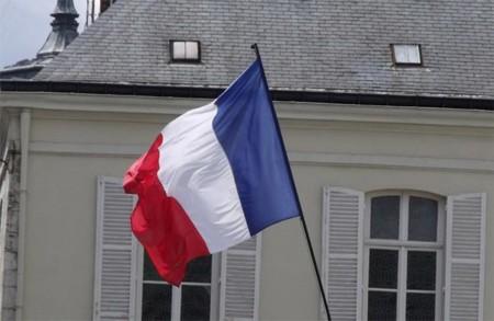 Bandera Francia 2