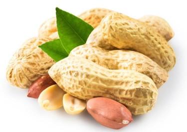 Permitir que los bebés coman cacahuetes podría evitar que desarrollen alergia