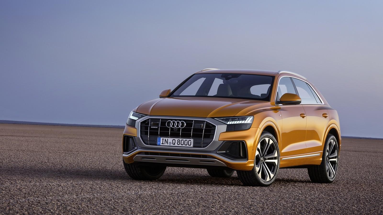 Foto de Audi Q8 2019 (14/33)