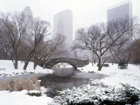 Más cosas que no sabías del mundo: el invierno de Nueva York es más frío que el de Islandia, la isla más remota del mundo…