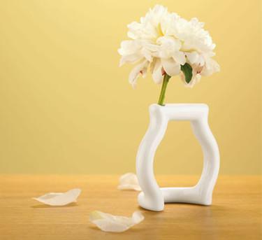 La esencia de un jarrón
