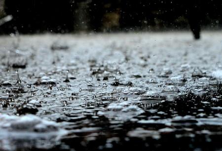 Rain Drops 459451