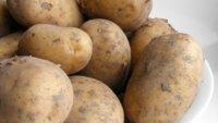 La patata: razones para que no falte en la dieta