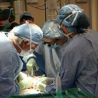 ¿Cuál es el órgano más trasplantado del mundo?
