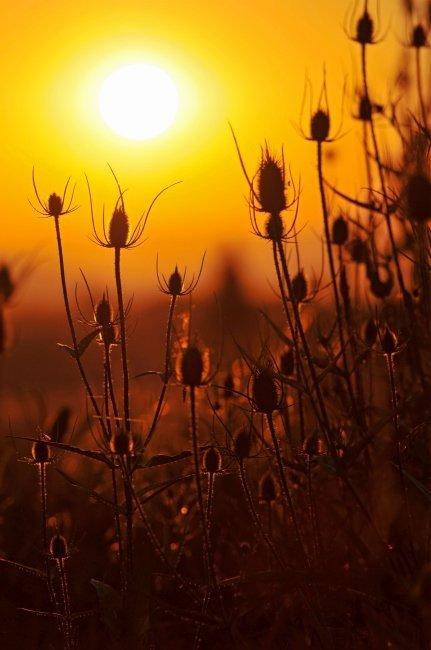Puestas de sol para inspirarte 5