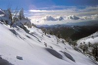 Sierra de las Nieves, destino europeo de excelencia