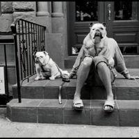Elliott Erwitt, el fotógrafo más irónico de la historia