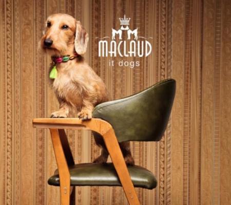 Maclaud It Dogs Lookbook 2014 P01