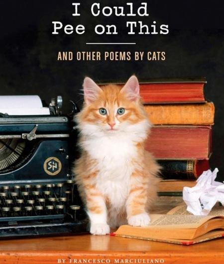Los 5 artículos it para los amantes de los gatos