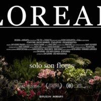 'Loreak' representará a España en la carrera por el Oscar 2016
