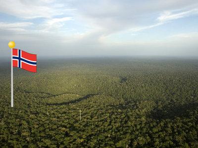 El Amazonas, en manos de Noruega: así ha terminado una diminuta nación con la misión de salvar la selva