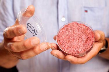 La primera hamburguesa de laboratorio