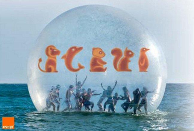 El Delfín 79 dice adiós al zoo de Orange