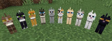 Gatos Minecraft