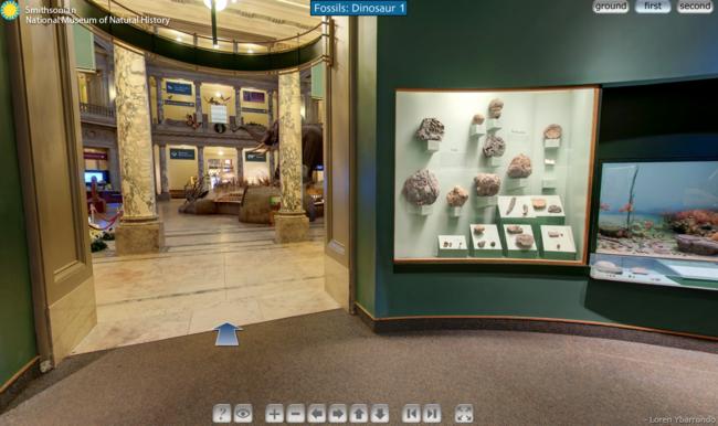 Museo historia natural Washington
